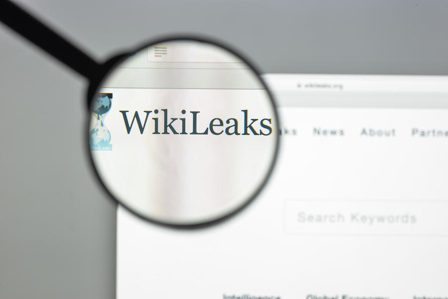 Closeup of Wikileaks website.