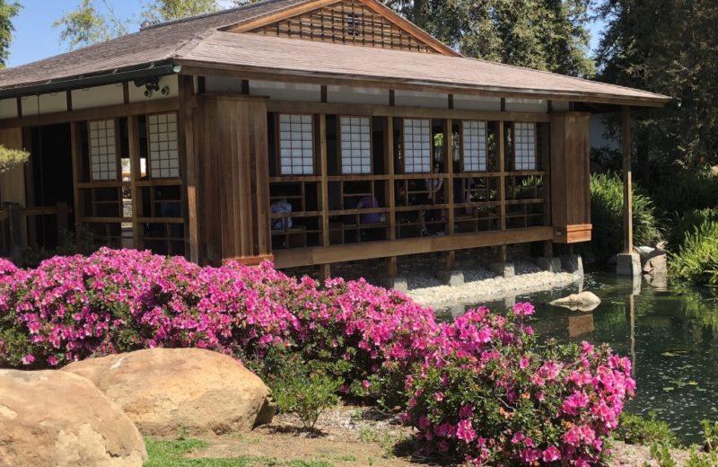 Japanese Garden Healing Retreat