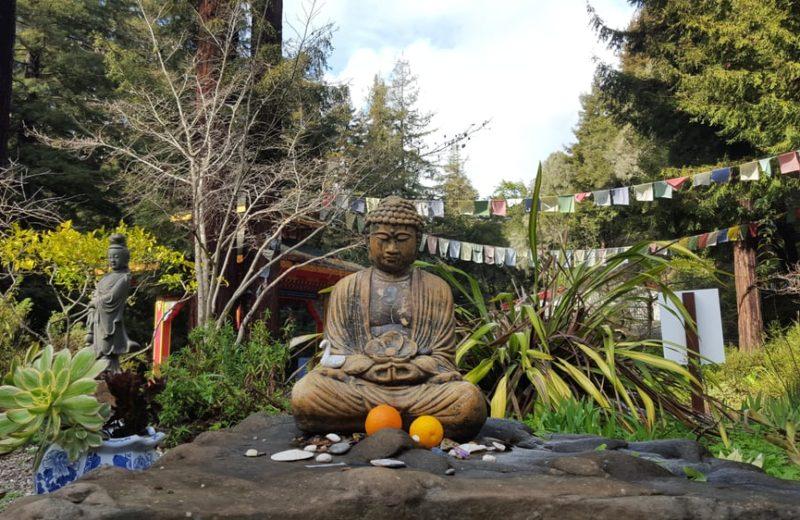 Yoga And Meditation Gratitude Retreat Santa Cruz Mountains