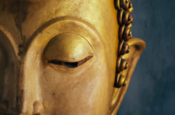 Embracing the eightfold path is one of the most powerful things you can do for yourself and loved ones.