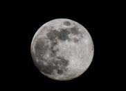 8/15 FULL MOON – Divine Harmony – Dhanishta (Vedic Astrology)