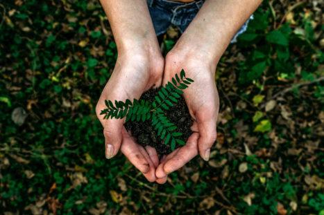 8 Easy Ways To Adopt An Eco-Friendly Mindset