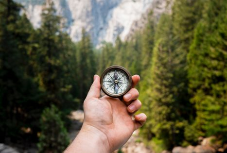 4 Ways To Find Your Ikigai — Your Reason For Being