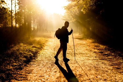 How Walking In Nature Can Develop A Happier, Happier More Productive Life