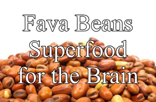 Fava Beans Superfood For The Brain
