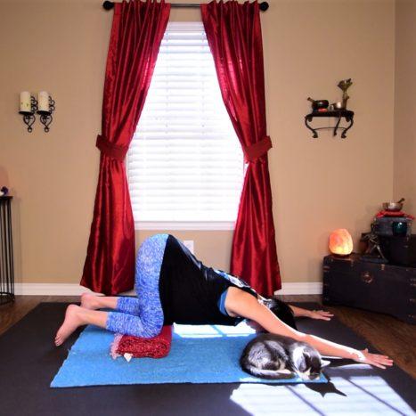 Yin Yoga Snack Coffee Break | Afternoon Energy Boost {15 Mins}