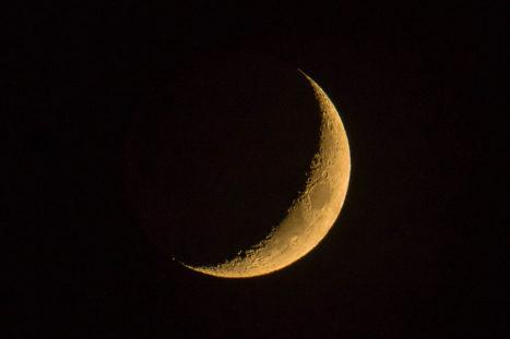 1/12 NEW MOON | Crossroads | Vedic Astrology