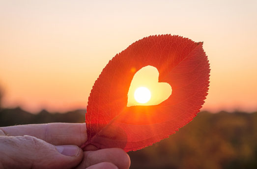 Why We Should All Commit To A Heart-Centered Life