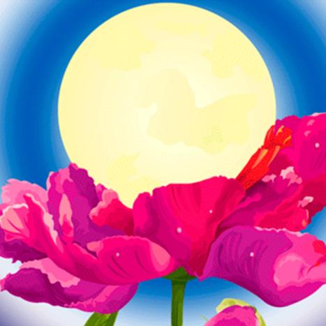 The Flower Moon Lunar Eclipse Obstacle Releasing Workshop!