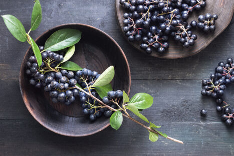 Lowers Cholesterol, Antiviral, Immune System Boosting – Aronia Berries
