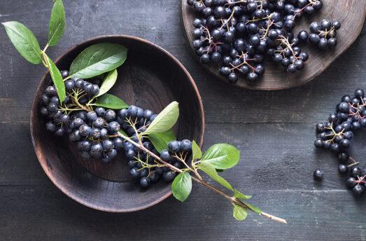 Lowers Cholesterol, Antiviral, Immune System Boosting - Aronia Berries
