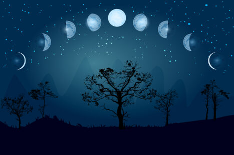 June 24 Solstice Full Moon | Mercury Direct | Forgive The Past (Vedic Astrology)