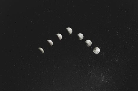 8/8 NEW MOON – Snake Medicine – Ashlesha – Vedic Astrology