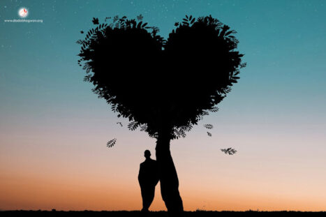 What Is The Relationship Between Love Meditation And Awareness?