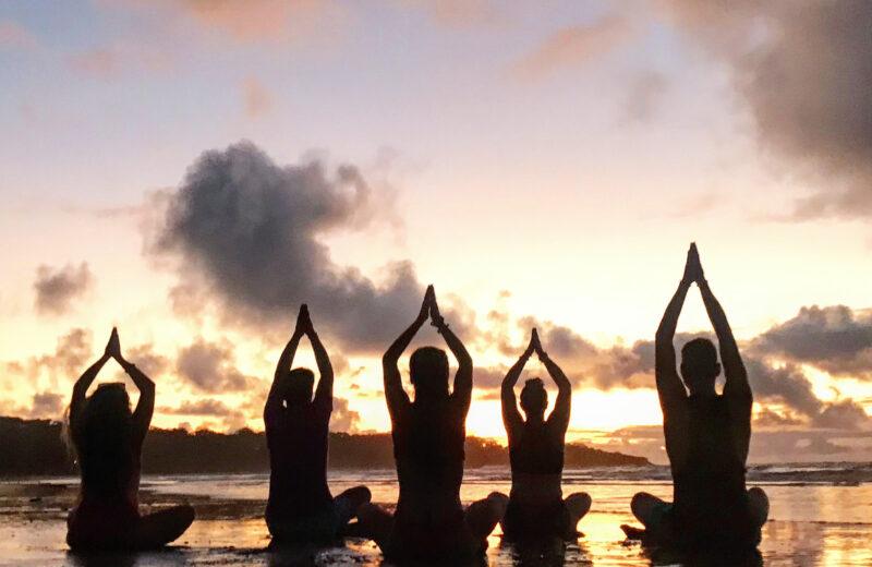 Ayurveda Fundamentals Training & Retreat In Costa Rica
