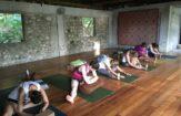 Fall Yoga Workshop Series